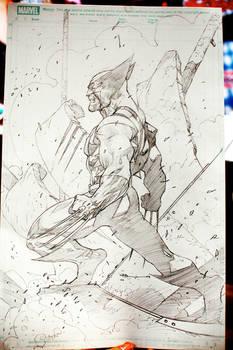 WolverineSketch