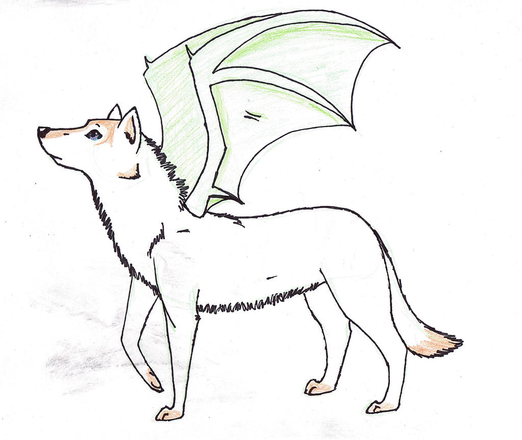 Wolf With Dragon Wings Jpg 1024x863 Wolf Wing Drawings How To Draw