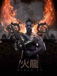 Fire Dragon by NekroXIII