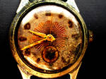 old wrist watch by RAYMONDOU
