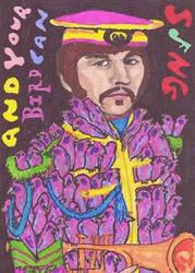 Ringo's Birds by CATtheMinion