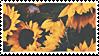 Stamp - Sunflower [F2U]