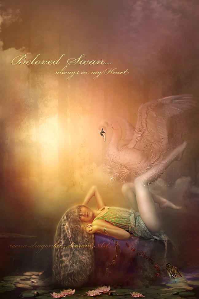 Beloved Swan by xeena-dragonkizz