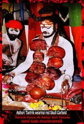 Aghori worshiping Kali Maa by Ravimishra085