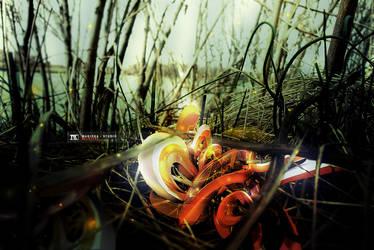 Wildfire by RIPIX