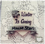 House Stark brooch