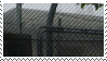 dark fog stamp