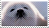 fluff ball stamp by catstam