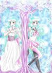 Princess Asami - Sailor Aurora