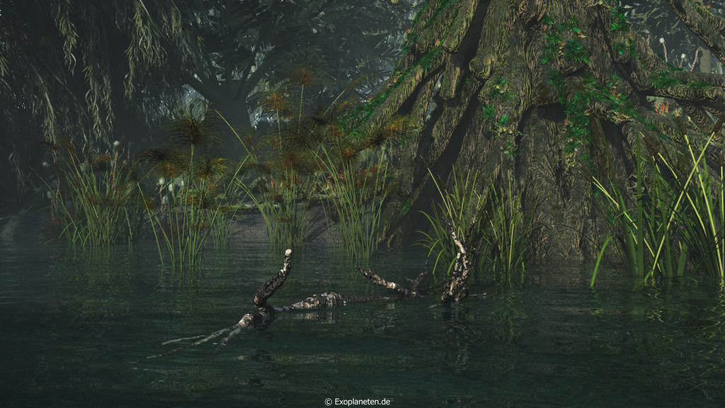 Swamp by ChrisKlm