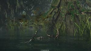 Swamp by ChrisKlm