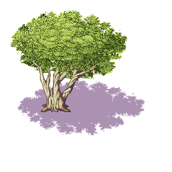 Tree by goddessccoa