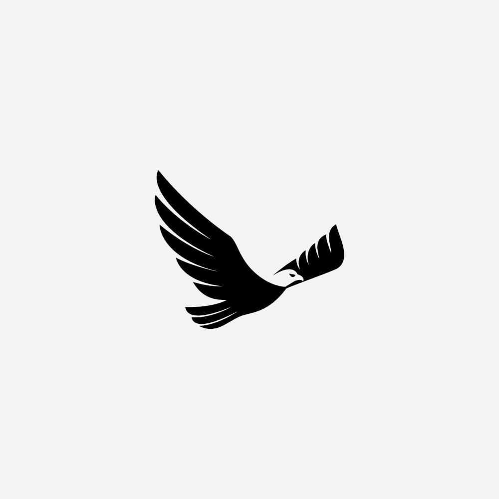 Eagle by samadarag on DeviantArt