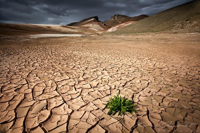 Living Earth by XavierJamonet
