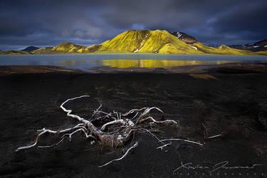 Dark Light by XavierJamonet