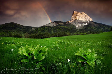After the storm by XavierJamonet