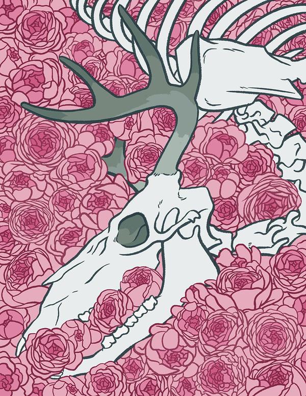 Ranunculus by Daaakota