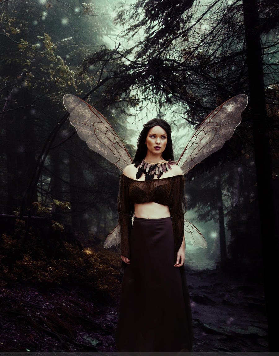 Guardian of the Fae