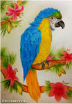 Lilly Parrot