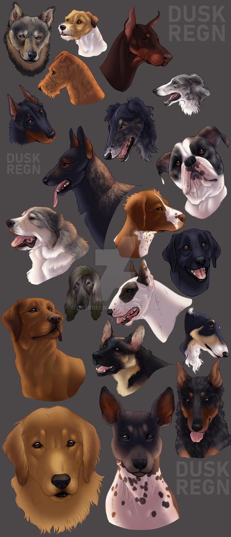 various doggos