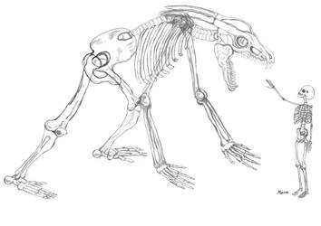 skeleton Girl and skelton Monstar by duf20