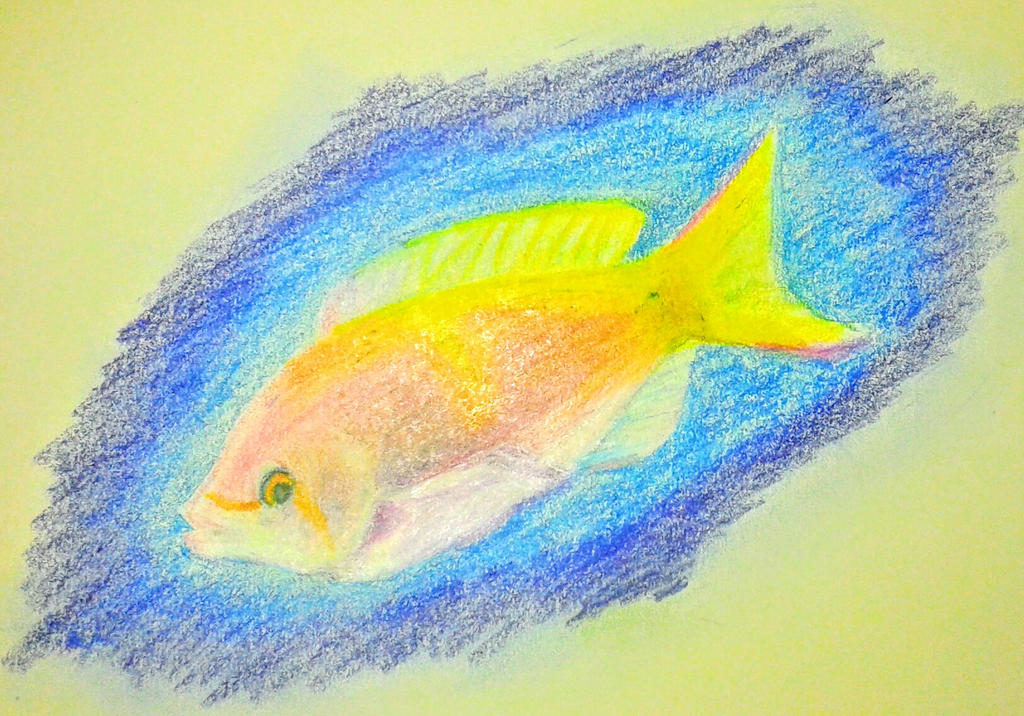 Tropical fish by cubone4000 on deviantart for Jan s tropical fish