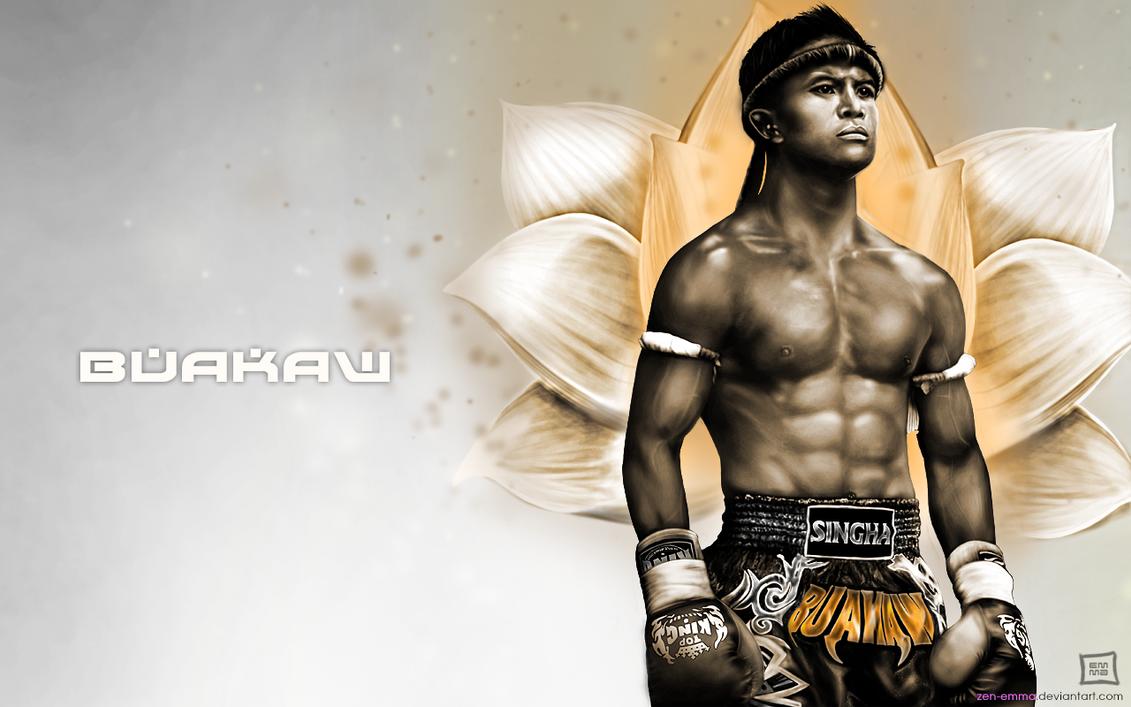 Blitz boxing wallpaper (2560 x 1600) martial arts wallpapers