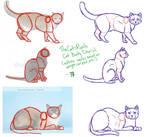 Cat Body Tutorial