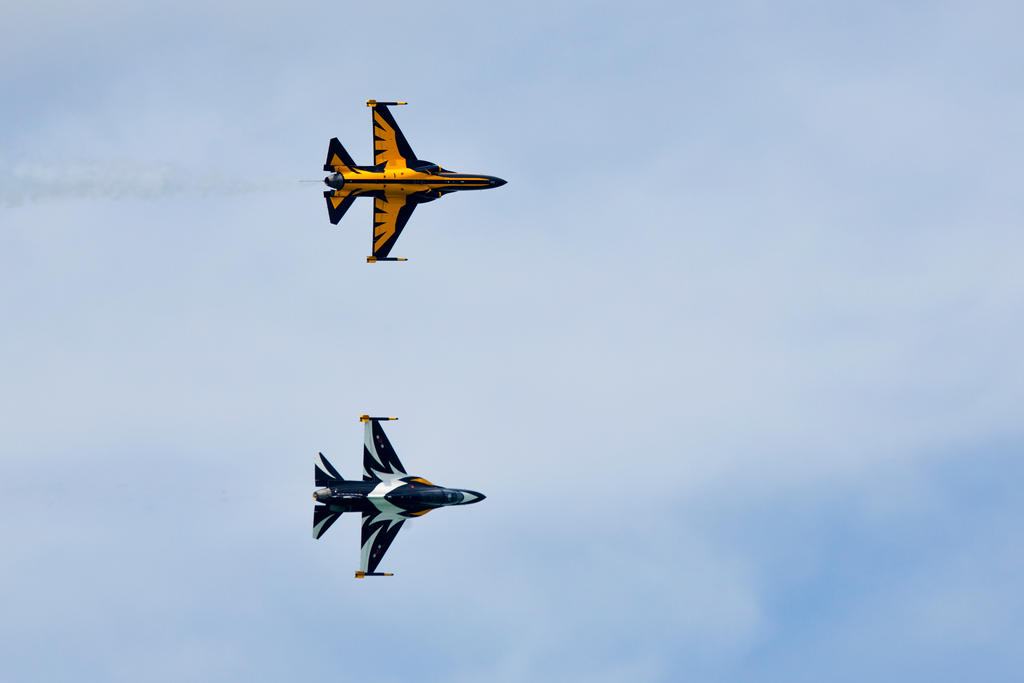 ROKAF Black Eagles by TomFawls