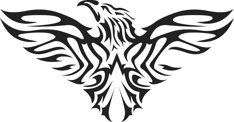 D Line Drawings Logo : Desmond s t shirt with eagle by vesferatu on deviantart
