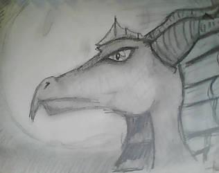 Dragon Sketch by IkaraNoshima