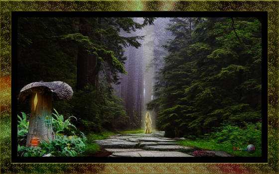 QH-20180909-Fairy-Forest-Path-v11