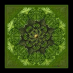 QH-20200117-TB2406Bk04Pg37-Leafy-Greens-Mandala-v3