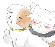 APH: UsxUk Kitties