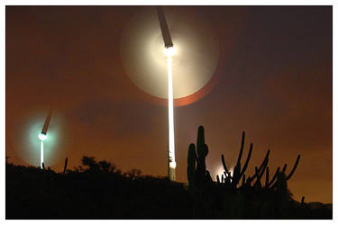 Windmill and Cactus