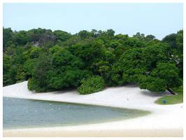 Abaete Lagoon by maxholanda
