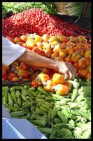 Fruits in the Market by maxholanda