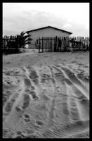House by maxholanda