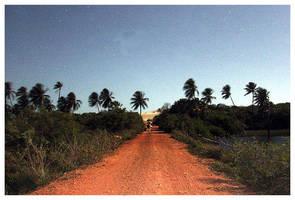 Path at Full Moon by maxholanda