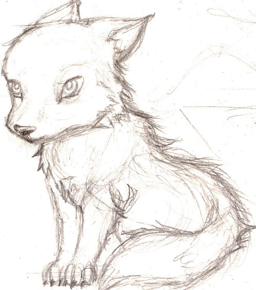 Such a windyDay-wolfcu...