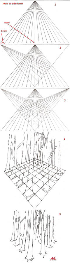 How to draw forest in perspective