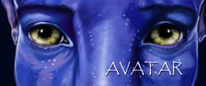 J. Sully-Avatar