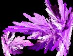 PNG-fractal stockVK6