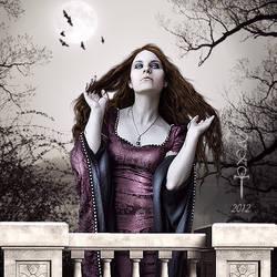 The Start by vampirekingdom