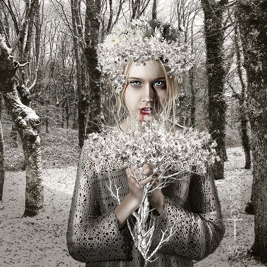 Last Winter by vampirekingdom
