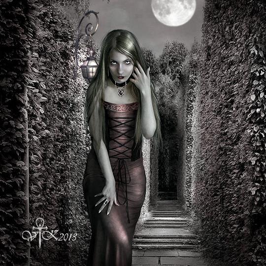 Labyrinth by vampirekingdom
