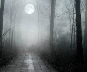 BGvk2013-b by vampirekingdom