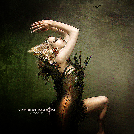 Only One by vampirekingdom