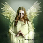 Angels and Demons.......New  Vision