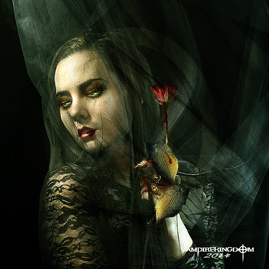 The Rose by vampirekingdom
